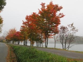 20161020女神湖.jpg